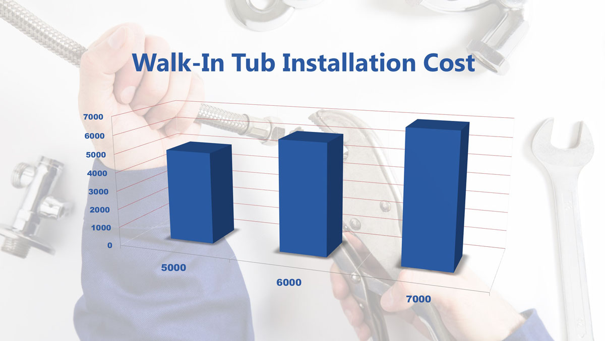 Walk In Tub Installation Cost